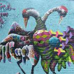 masai-birdo-2016-1.jpg