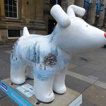 north-snowdogs19.jpg