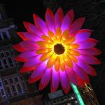 london-lumiere-nightlife3.jpg