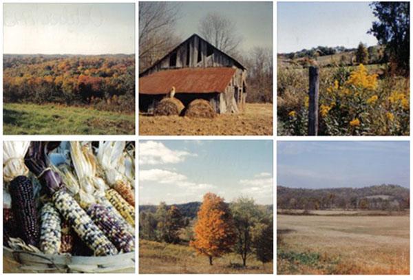 autumn-ohio.jpg