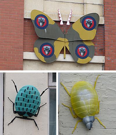 bedminsterbugs.jpg