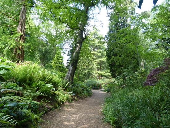belfast-gardens-18.jpg