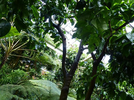 belfast-gardens-20.jpg