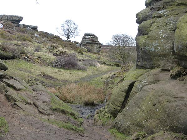 brimham-rocks-16.jpg