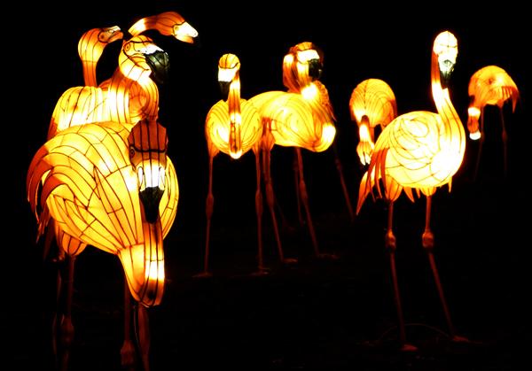 chiswick-lantern19.jpg