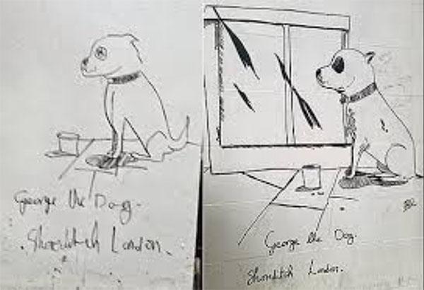 george-the-dog.jpg
