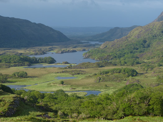 The Ring of Kerry & Killarney National Park (Ladies' View