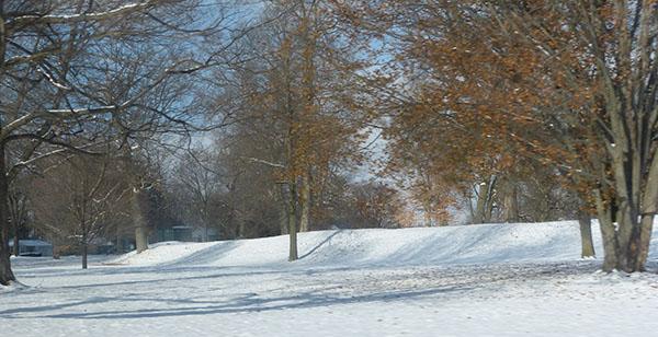 newark-mound01.jpg