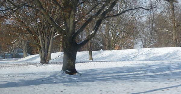 newark-mound02.jpg