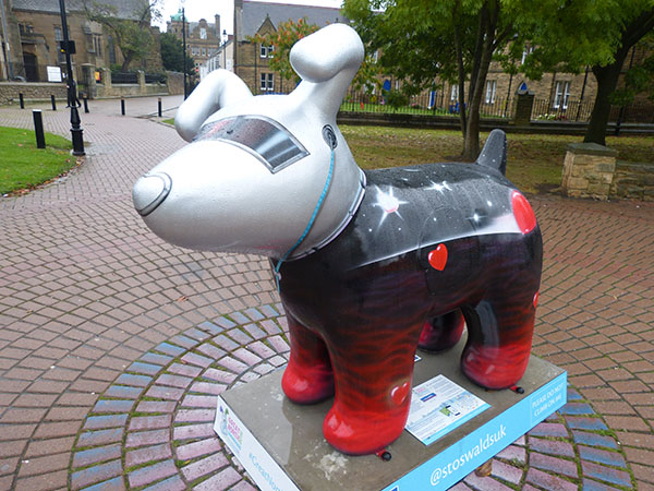 north-snowdogs05.jpg