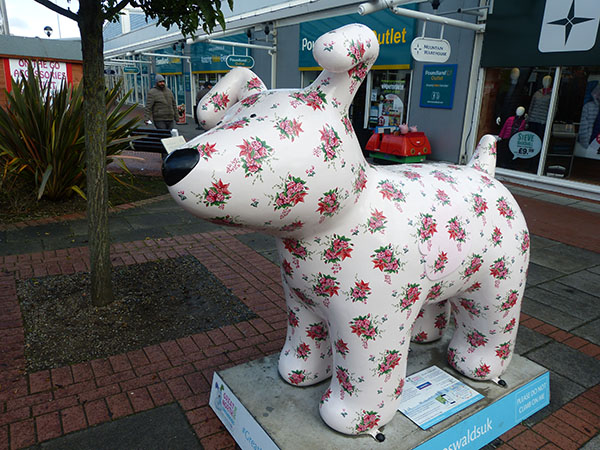 north-snowdogs09.jpg