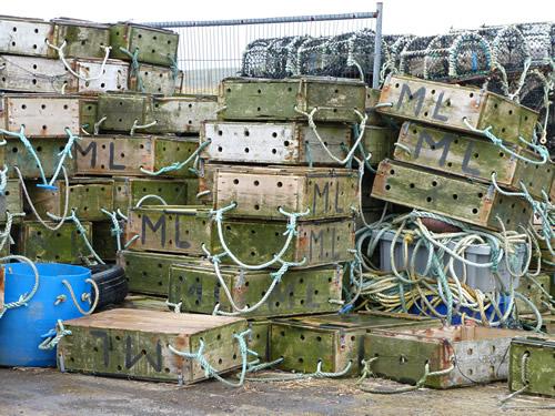 orkney-fishing.jpg
