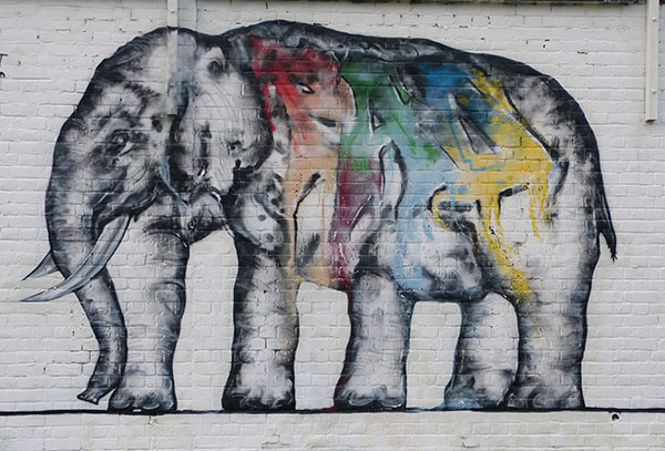 pad-elephant1.jpg