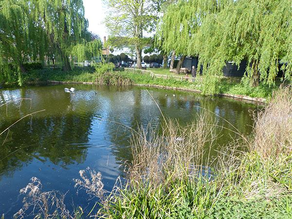 ruislip-horse-pond.jpg