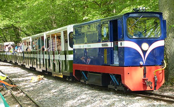 ruislip-lido-railway-19.jpg