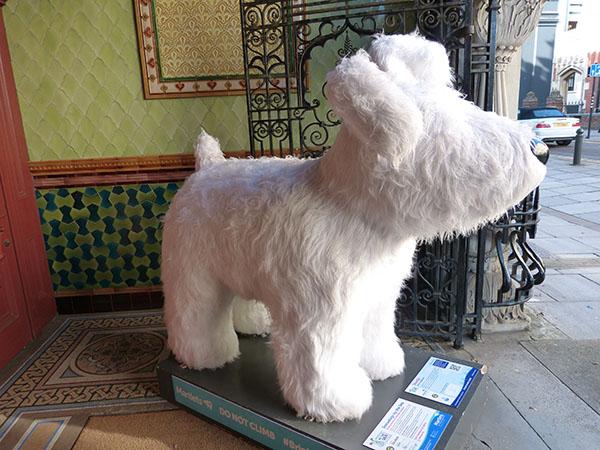 snowdogs-brighton05.jpg
