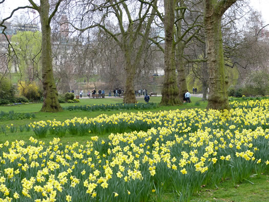 spring-london2015-09.jpg