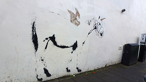 stewy-horse.jpg