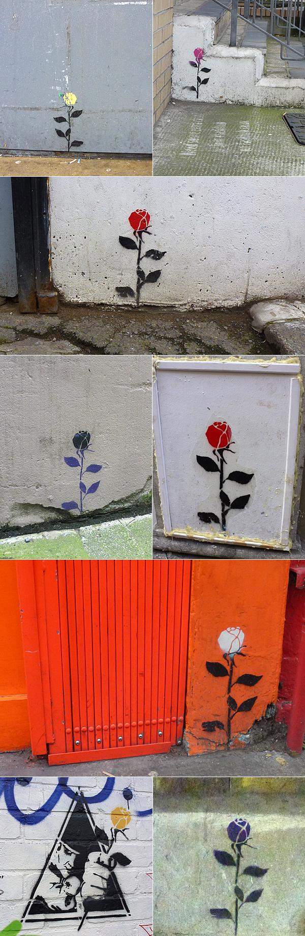 street-art-flowerguy-roses1.jpg