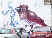 streetartbird.jpg