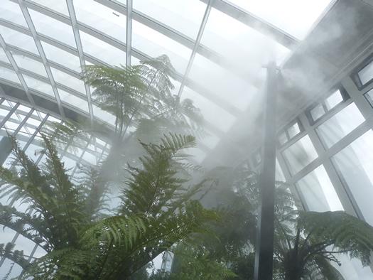 walkie talkie sky garden