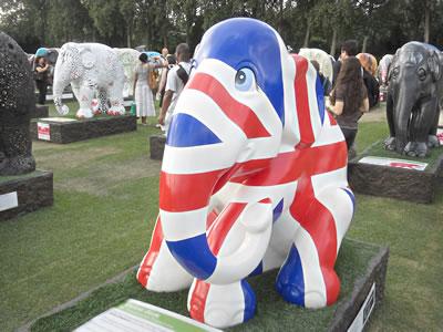 elephant6.jpg
