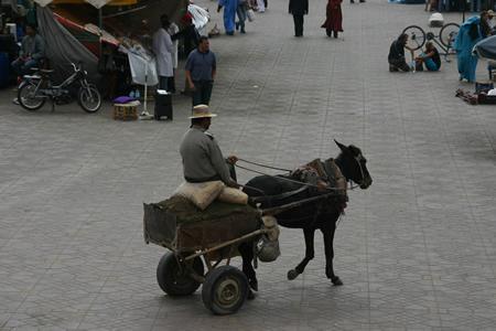 morocco010.jpg