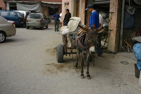 morocco013.jpg