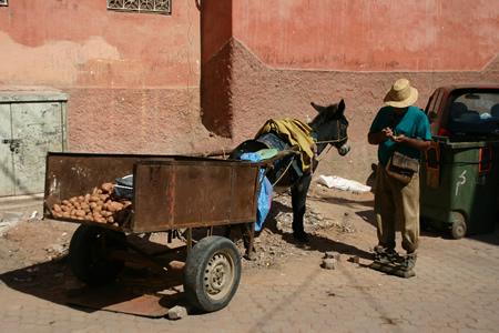 morocco018.jpg