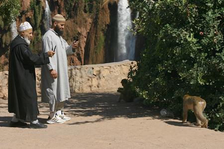 morocco06.jpg