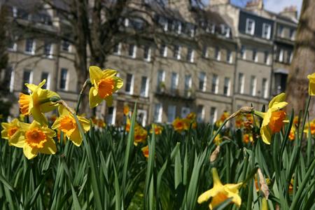 springbath2.jpg
